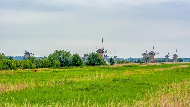 Väderkvarnar i Kinderdijk, Nederländerna arkivfoto