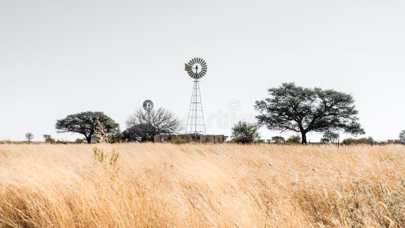 Väderkvarnlandskap i Namibia royaltyfri fotografi