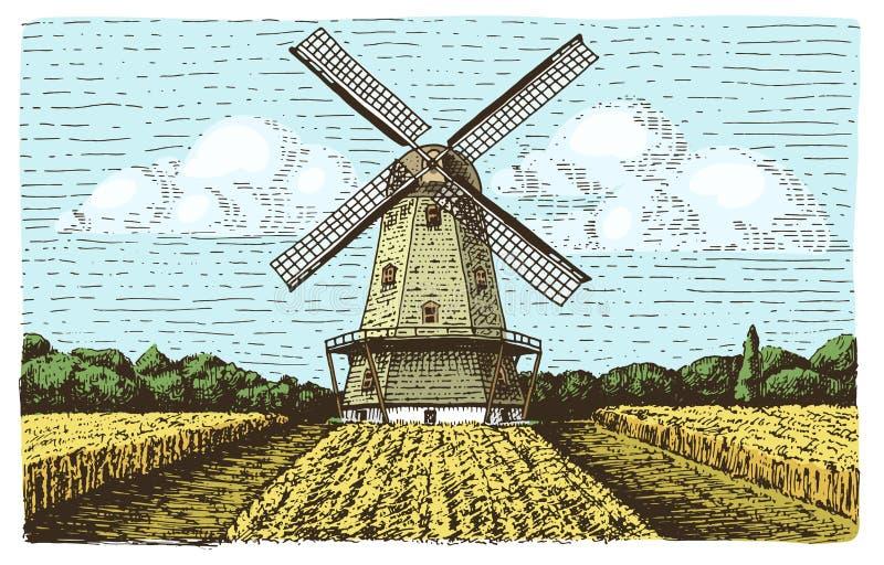 Väderkvarnlandskapet i tappning, dragen eller inristad stil för retro hand, kan vara bruk för bagerilogoen, vetefält med gammalt vektor illustrationer