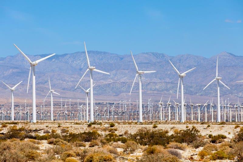 Väderkvarnturbiner för elkraftproduktion, gömma i handflatan kvistar, Kalifornien Enkelt av ren energi royaltyfri fotografi