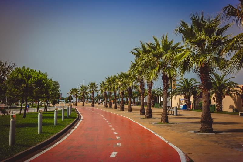 Väg för cykelridningen på special cykelgränd på havscoastlinen royaltyfri fotografi