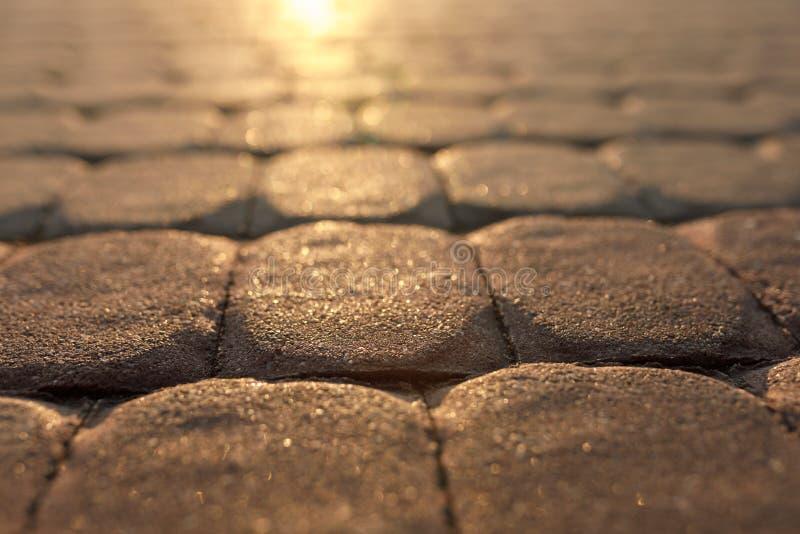 Väg från stenläggningstenar på solnedgången royaltyfri foto