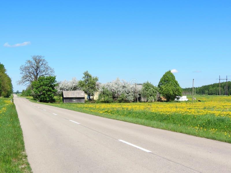 Väg, gamla hem och vårväxter, Litauen arkivbilder