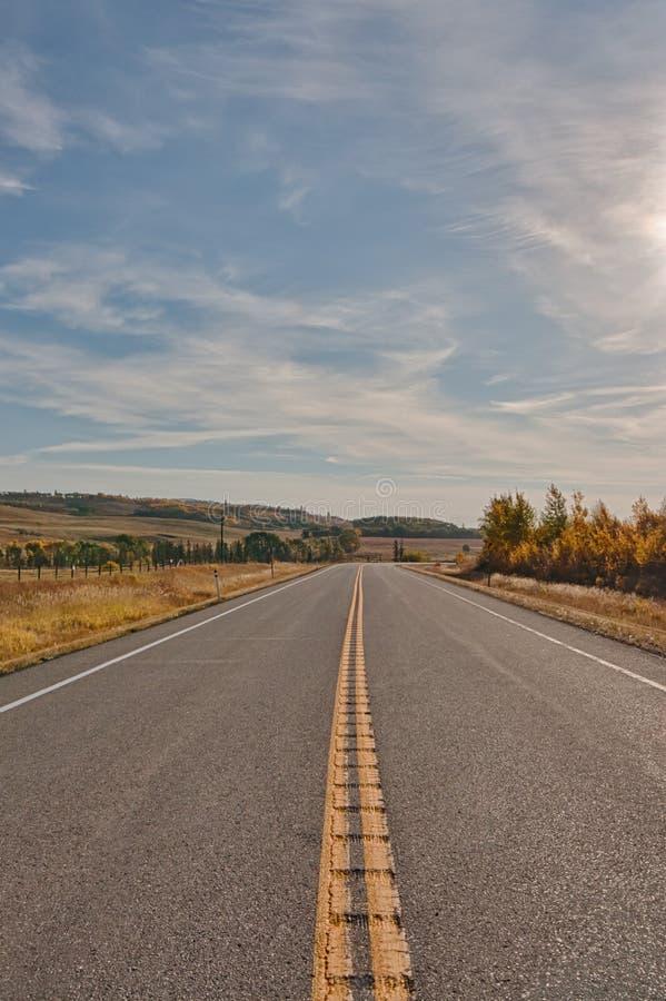Väg i Alberta Foothills royaltyfri fotografi