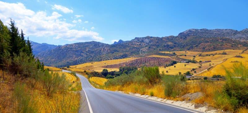 Väg i Andalusia fotografering för bildbyråer