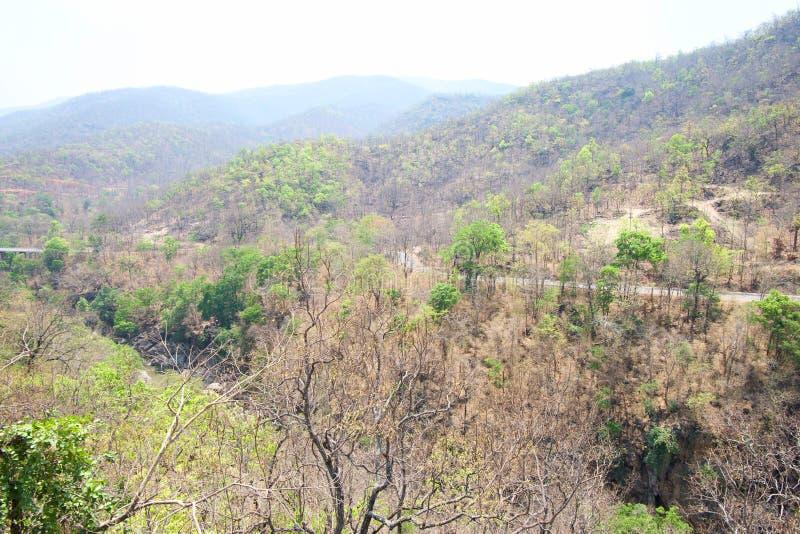 Väg i berget och floden i skog på den Op Luang nationalparken som är varm, Chiang Mai, Thailand Varm väder och ointressant arkivfoton