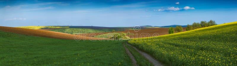 Väg i en dal av jordbruks- fält royaltyfria bilder