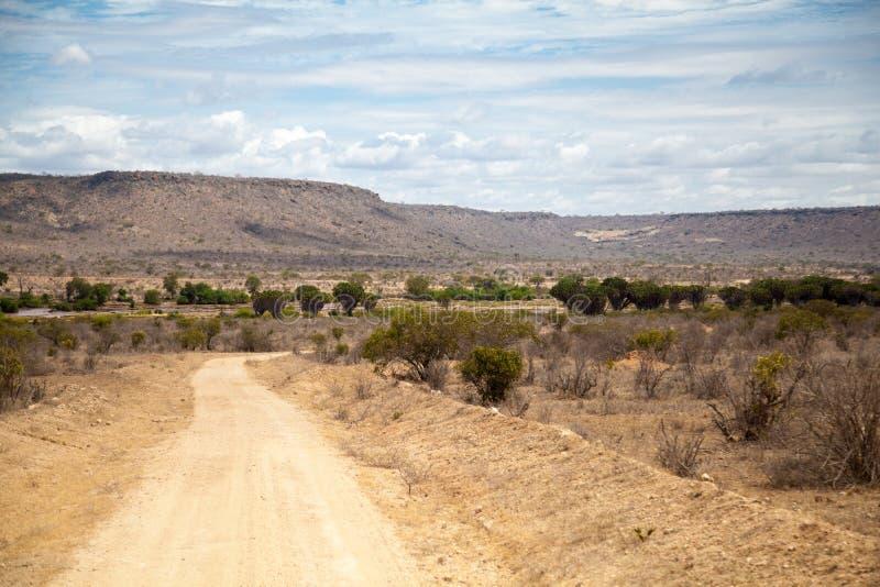 Väg i Kenya, savannah med berg arkivbild