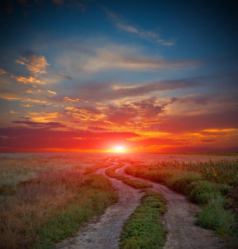 Väg i stäpp på solnedgångtid arkivbild
