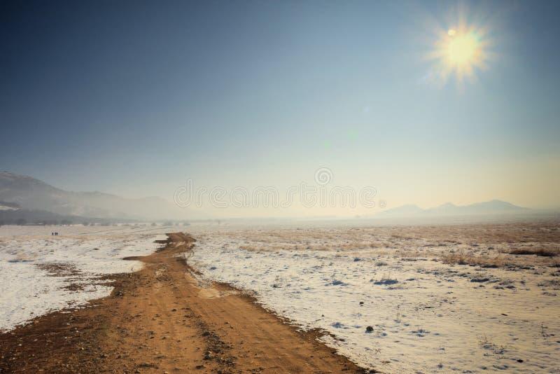 Väg i vinter arkivbilder