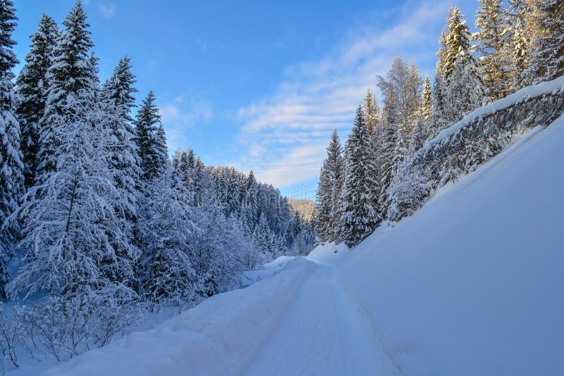 Väg i vinterskogen i de Ural bergen, Ryssland, Chelyabinsk region, Minyar Tal fe för Pushkin ` s arkivfoto