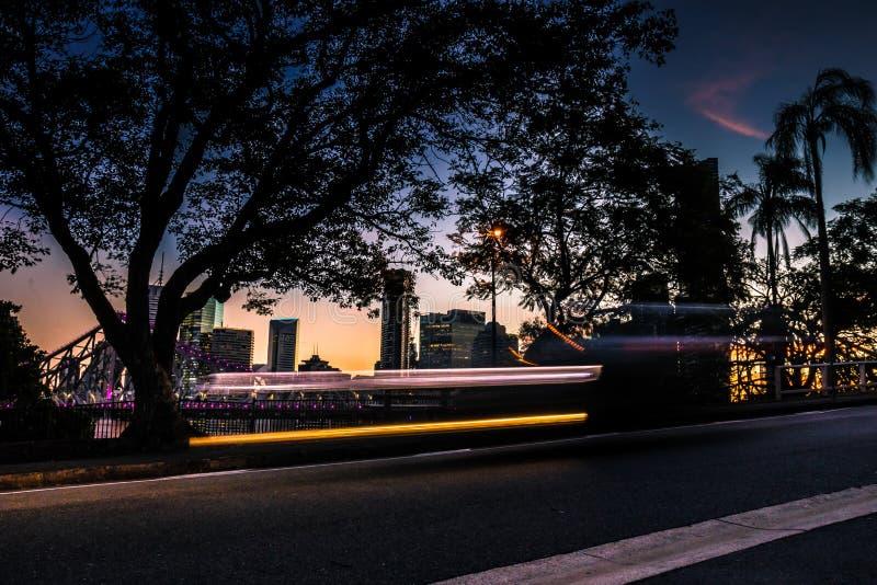 Väg med träd i Brisbane på natten arkivfoto