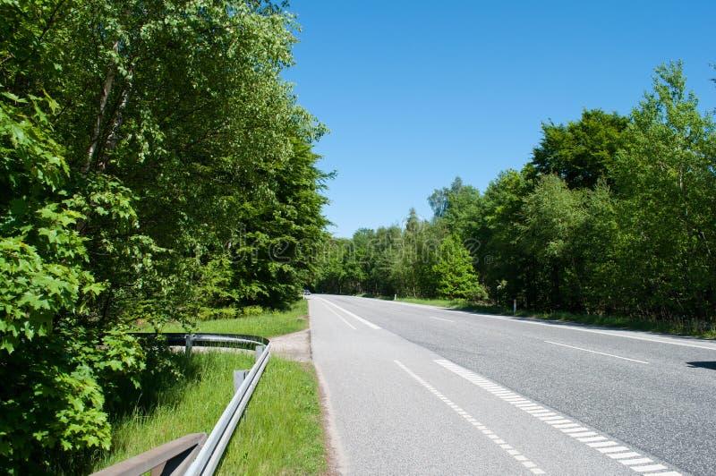 Väg nära Alleroed i Danmark royaltyfri bild