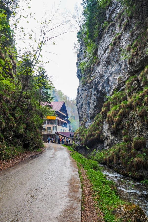 Väg och en kabin nära en bergflod arkivfoton