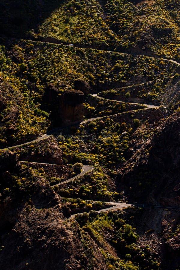 Väg på Pico de las Nieves royaltyfri foto