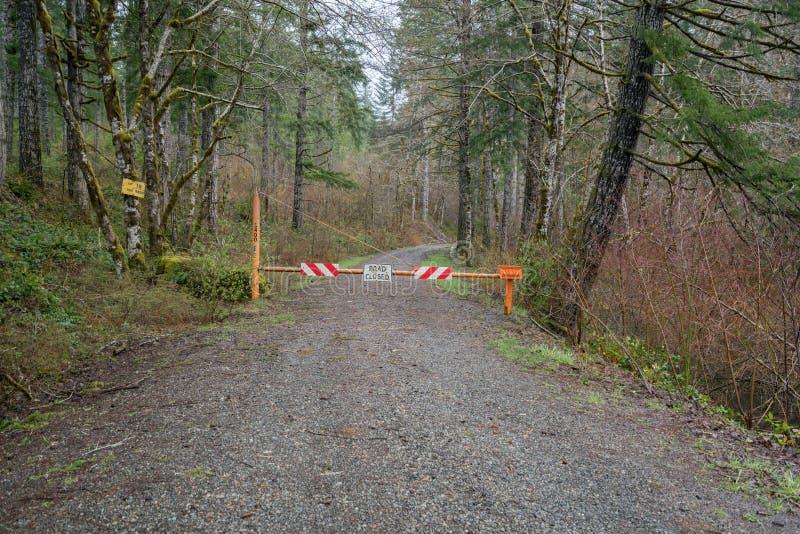 Väg som stängs i skog arkivbilder