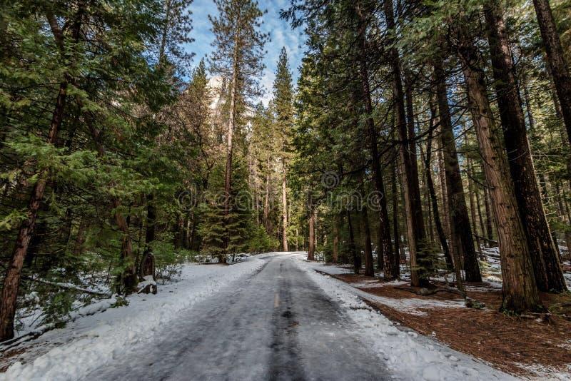 Väg som täckas med snö på vintern - Yosemite medborgare Parl, Kalifornien, USA arkivbilder