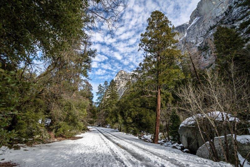 Väg som täckas med snö på vintern - Yosemite medborgare Parl, Kalifornien, USA royaltyfri bild