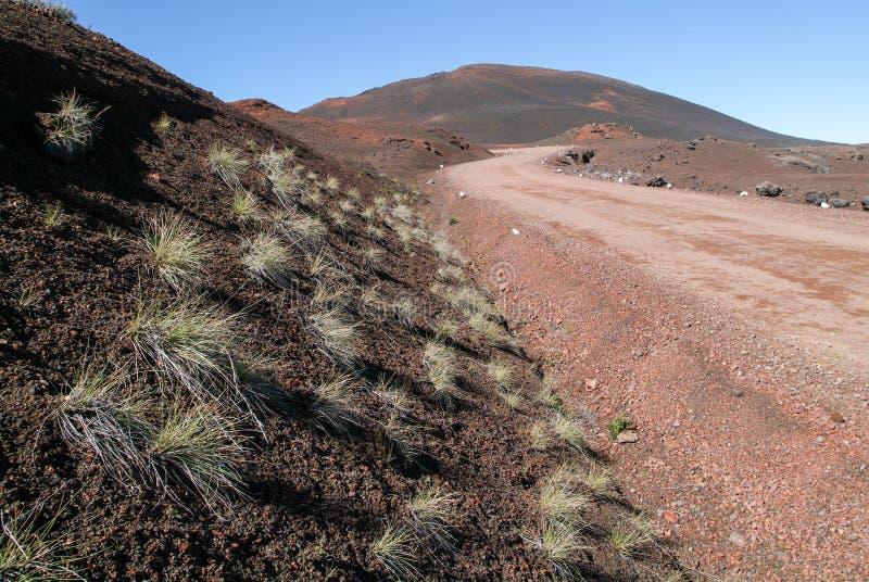 Väg till den Ringbult de la Fournaise vulkan på Lamöte arkivbilder