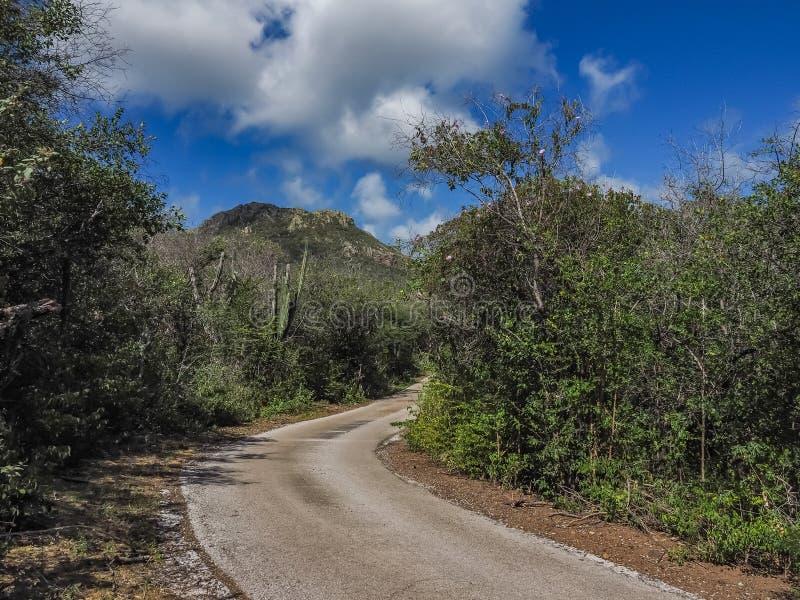 Väg till det Christoffelberg berget - Christoffel nationalparkCuracao sikter fotografering för bildbyråer