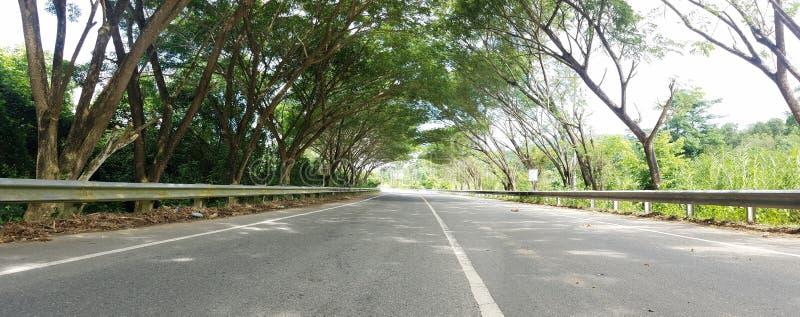 Väg till Geurutee, Lamno, Aceh Jaya royaltyfri bild