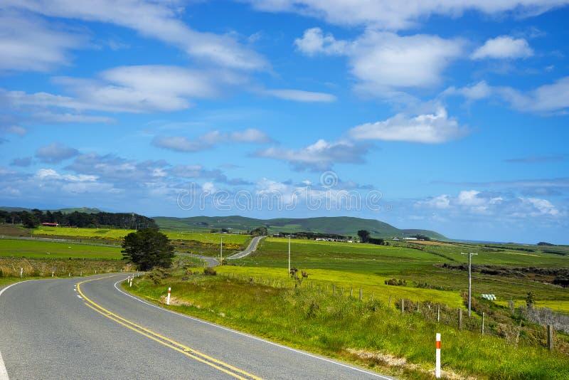 Väg till Invercargill Nya Zeeland royaltyfri fotografi