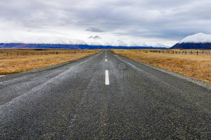Väg till oändligheten nära sjön Ohau, Nya Zeeland royaltyfri bild