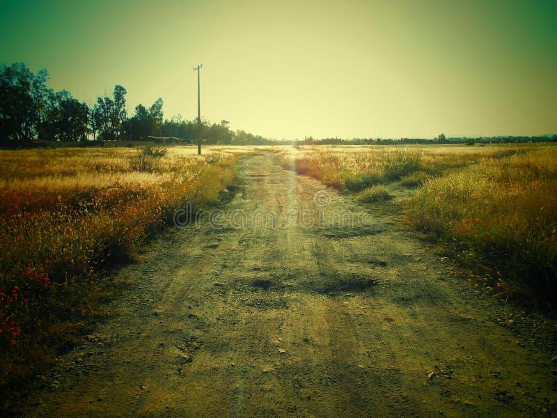 Vägar av grässlättar arkivfoton