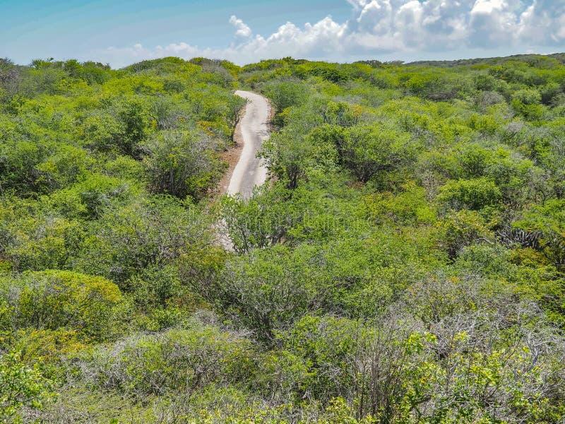 Vägar runt om Christoffel nationalparkCuracao sikter royaltyfria bilder