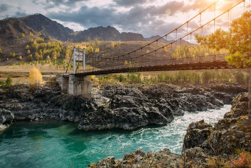 Vägbro över den turkosKatun floden i Altai berg Rysk höst i Sibirien Oerhört landskap med en metallbro royaltyfri bild