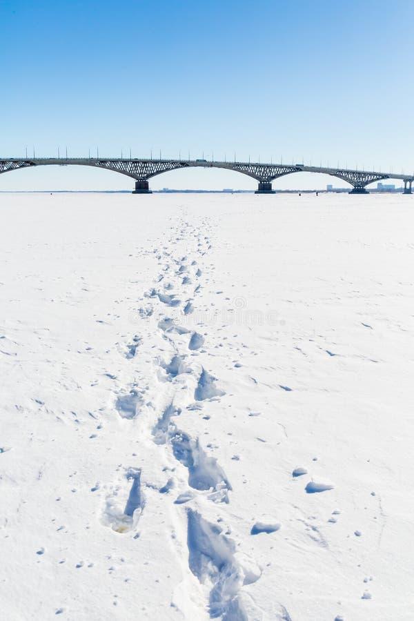 Vägbro över Volgaet River mellan städerna av Saratov och Engels övervintrar trees för snow för sky för lies för frost för mörk da royaltyfri fotografi