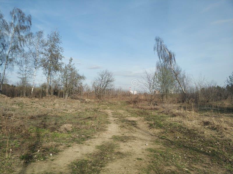 Vägen är bland fälten och träden tidig fj?der royaltyfria bilder