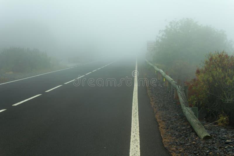 Vägen i dimman royaltyfri foto