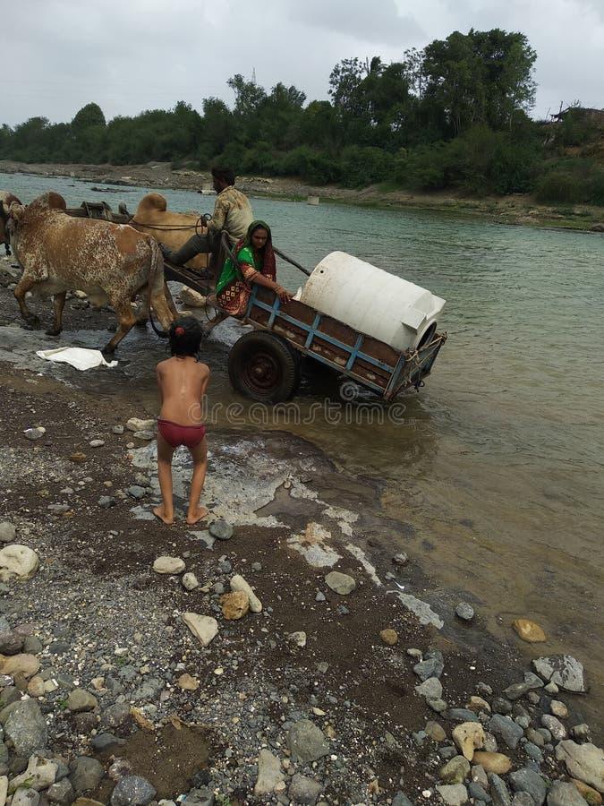 Vägen i floden detta är liv av byn i indisk bynaturality royaltyfria bilder