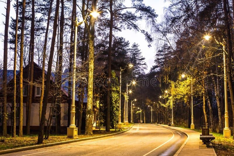 Vägen i parkerar på natten Gränd med härliga lyktor och att uppvakta arkivbilder