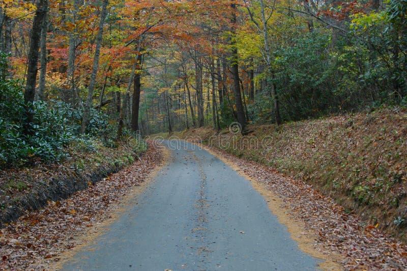 Download Vägen löpte arkivfoto. Bild av oktober, leaves, färger, land - 26514