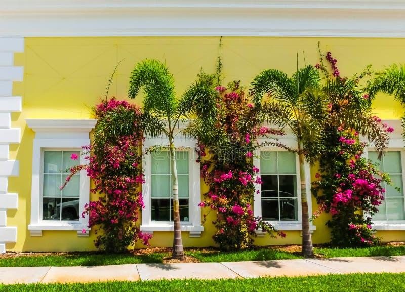 Vägen på gatan på Palm Beach, Florida, Förenta staterna arkivfoton