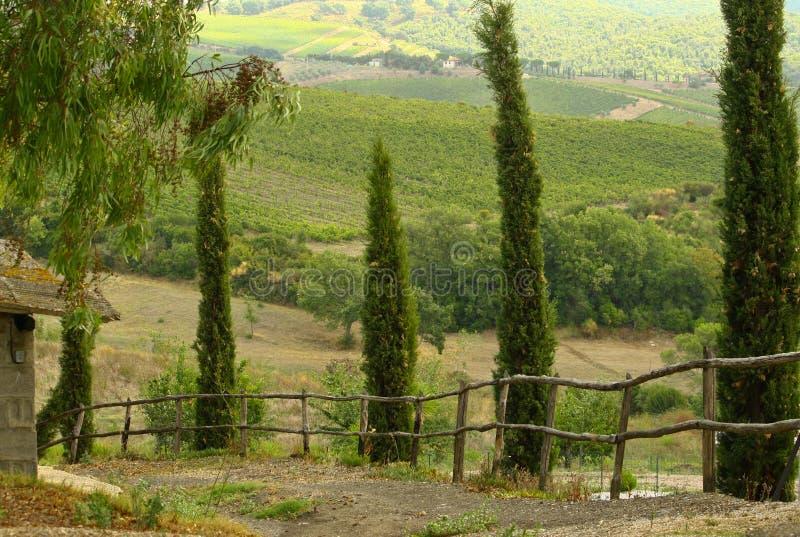 Vägen på Toscany royaltyfria foton