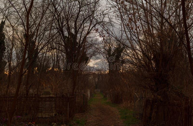 Vägen till kyrkogården på skymning arkivfoto