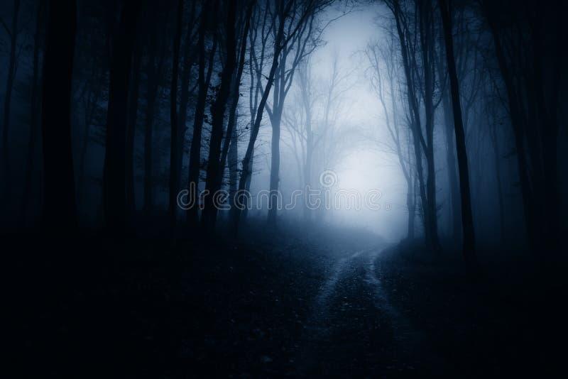 Vägen till och med mörker spökad skog med blått fördunklar arkivfoton