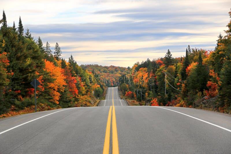 Vägen till och med provinsiell Algonquin parkerar i nedgången, Ontario, Kanada royaltyfria bilder