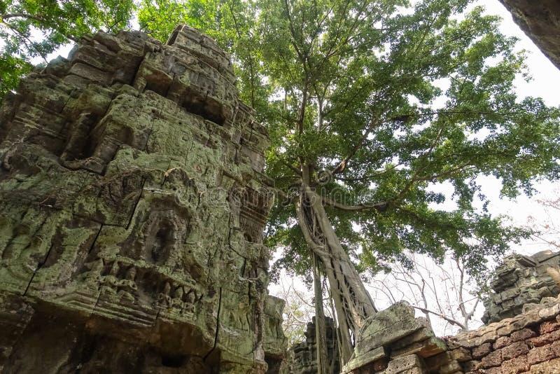 Vägg av den Bayon templet på Angkor Thom arkivfoton