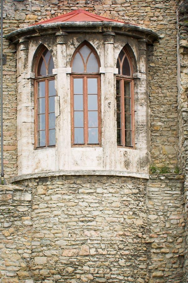 Vägg av den gamla medeltida slotten, detalj med ghotic fönster royaltyfri fotografi