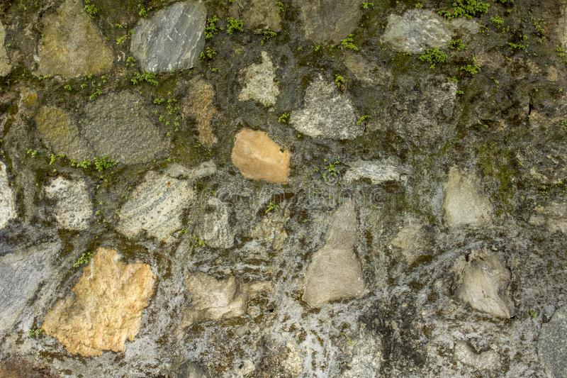 Vägg av olika stora naturliga stenar med liten grön vegetation Vägg med mossa grov väggyttersidatextur royaltyfria foton
