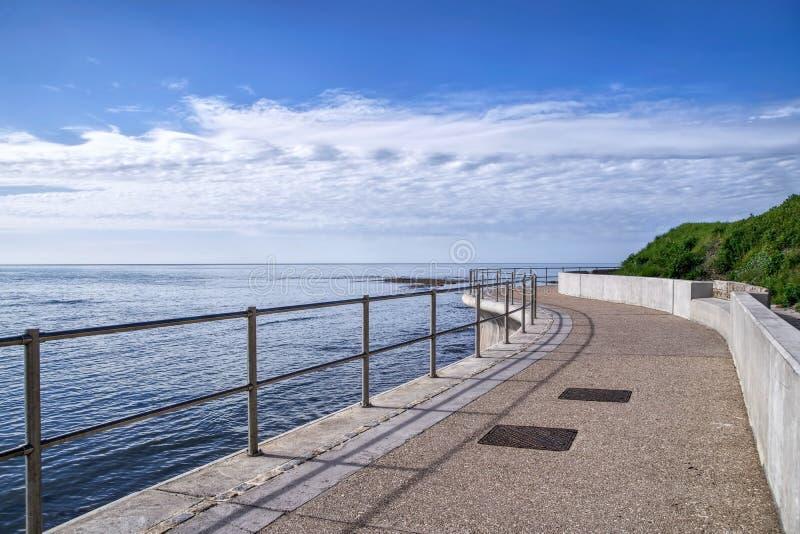 Vägg för havsförsvar på Lyme Regis royaltyfria foton