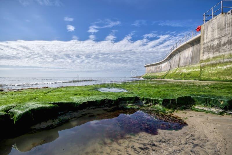 Vägg för havsförsvar på Lyme Regis arkivfoton