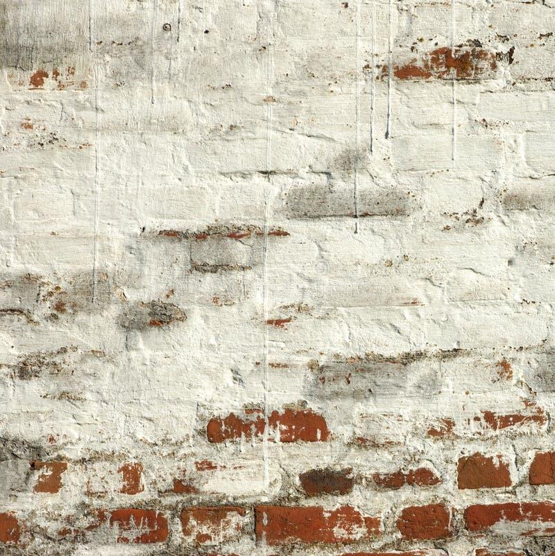 Vägg för röd tegelsten för tappning med vit murbrukrambakgrund royaltyfri bild