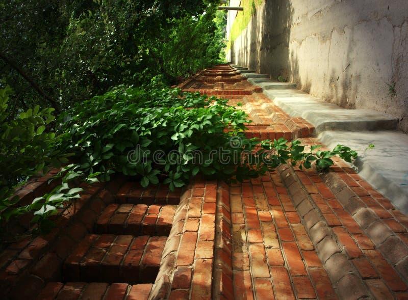 vägg för sten för tegelstenmurgröna gammal royaltyfri bild