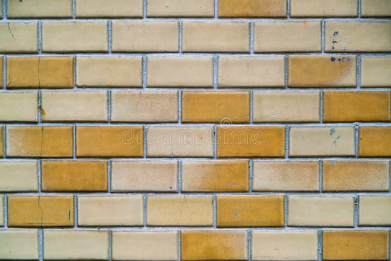 Vägg för tegelplattor för gul mosaik i toalett royaltyfri foto