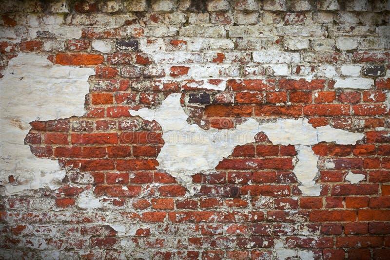 vägg för textur för tegelstengrunge röd arkivbild
